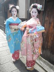 Kiku&Fuji (Kikyou chan) Tags: kyoto maiko tama gion okiya hanamachi kobu mamekiku mamefuji karyuukai