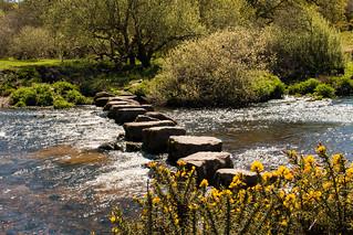 Stepping stones at Week Ford, Dartmoor
