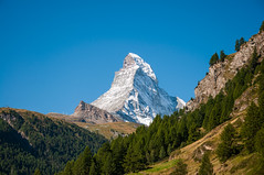 Matterhorn View (Oliver J Davis Photography (ollygringo)) Tags: matterhorn mountain peak famous nature natural landscape landmark icon iconic view trees forest alpine monte cervino blue sky snow green europe travel zermatt pine woods summer swiss postcard tourism national park nikon d90