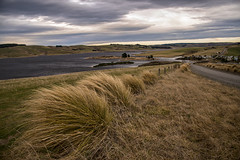 A cold wind (Ian@NZFlickr) Tags: morning lake cold clouds wind nz otago tussocks mahinerangi