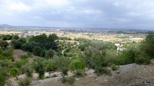 Majorca (88)