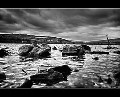 Loch Lomand (MMcQuade) Tags: trees sky blackandwhite water clouds scotland rocks hdr balloch lochlomand