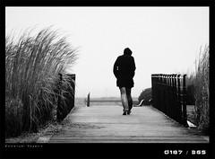 J187D Le passager du vent (Emmanuel DEPARIS) Tags: people pont roseaux emmanueldeparis