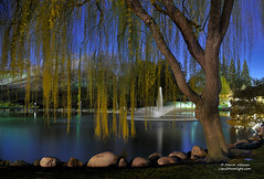 Just a Walk in the Park (Darvin Atkeson) Tags: california ranch park trees sunset tree fountain grass reflections spring twilight pond oak rocks long exposure glow dusk walk hills moonlit danville willow pines moonlight diablo walnutcreek alamo weeping regional contracosta darvin atkeson darv liquidmoonlightcom lynneal