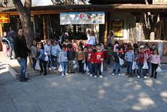 colegio-orvalle-infantil-zoo (27)