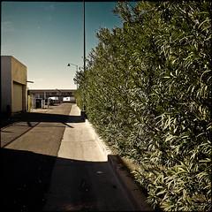 mesa 2041748 (m.r. nelson) Tags: arizona urban usa southwest america az americana mesa urbanlandscapes artphotography mrnelson newtopographic markinaz nelsonaz