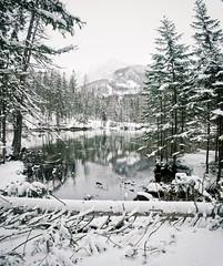 Relief. (LaPanteraRosa.) Tags: winter snow cold reflection austria sterreich greenlake steiermark sigma1770 grnersee tragss vertorama sonyalpha700 oberort