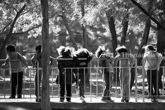 School Girls in the Park