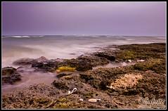 012A (Mobeen Mazhar) Tags: road city sunset sea beach night marina sunrise mall zoo al gulf centre towers 360 center crescent kuwait souq maidan salmiya avenues scientific ahmadi sharq fahaheel hawally hamra failaka safat agaila farwaniah