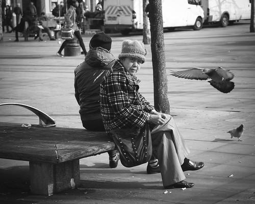 in good company (Andre Delhaye) street uk black manchester grey gris pigeon pigeons streetphotography olympus andre olympuspen zuiko 45mm passaro ep3 blackandwhitephotography digitalpen m43 mft blackandwhitephotographs mirrorless blackandwhitepictures delhaye blackandwhitephotographer micro43 microfourthirds 45mm18 43 andredelhaye andredelhayecom olympusdigitalpen blackandwhitephotographypictures blackandwhitephotographers wwwandredelhayecom wwwandredelhayenet andredelhayenet olympusep3 delhayeandre andredelhayephotographer penep3 olympusm45mmf18 olympusmzuikodigital45mm118 olympus45mm18
