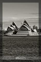 Sydney's Opera House (Rana Dee) Tags: city blackwhite scenery sydney australia operahouse