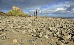 Lindisfarne castle (Keartona) Tags: england building castle island coast rocks holy northumberland posts lindisfarne