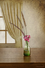 Silent Feelings (Fahad Al-Robah) Tags: flowers flower green window office view curtain masterpiece rosy   polychrome