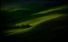 """spiragli di ... luce ("""" paolo ammannati """") Tags: italy panorama me alberi italia raw photographer top natura ombre io tuscany crete siena toscana terra inverno colori viaggi grano cretesenesi paoloammannati valdarbia effettinaturali"""