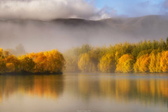 Misty Lakes Twizel (shaunyoung365) Tags: mist mountain lake mountains sunrise landscape sony newzealnd a7rii