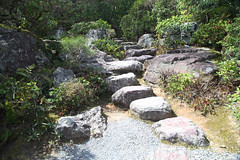 Stepping (Peter J Brent) Tags: japan kyoto path steppingstones okochisanso