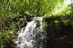Parque Estadual Lago Azul (Trilhas e lugares) Tags: parque green azul lago paisagem campo mouro estadual