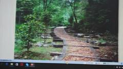 DSC07466 (yongheecs永和社大生態保育社) Tags: 林場