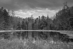 Three Johns Pond (LeavenworthObey) Tags: wisconsin northwoods eagleriverarea nature threejohnslake pond reflections chequamegonnicoletnationalforestusforestservice landscape clouds water trees pines composition tranquility afterthesnow spring nationalforest canon7d digitalzonesystem blackandwhite bw dynamicrange 2016 wwwjarobortizcom digitalphotography singlecapture nothdr