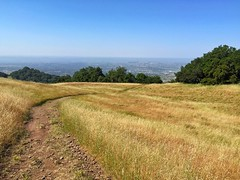 A trail on Taylor Mountain (harminder dhesi photography) Tags: california park mountain nature landscape outdoors spring view hiking sonoma trail bayarea sonomacounty norcal santarosa iphoneography snapseed
