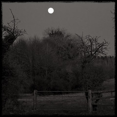Untitled (Daniel Underhill) Tags: trees moon sepia countryside spring gate country farmland gloucestershire pasture fields nightsky