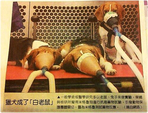 「抗議」2012/2/14(二)上午10:30原能會抗議活動,要求停止犬隻放射毒理實驗室,核研所請懸崖勒馬,20120210