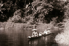 JB013-28-11-1956 (The Ulu and the Museum) Tags: people travelling river walking landscape boats outside boat other others community objects location daytime subject 1956 date riverbank timeofday tinjar menmorethanone longburoi villageorlonghouse