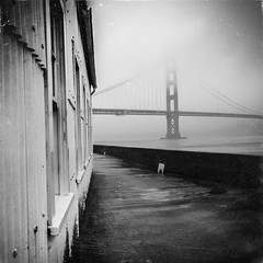 Toward the Sea (catlucia) Tags: sanfrancisco fog goldengatebridge crissyfield sfist ggb75