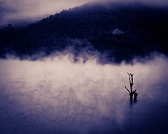 Spooky (pangalactic gargleblaster and the heart of gold) Tags: mist fog landscape kerala processed munnar