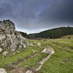 Un sentiero fangoso (Andrea Rapisarda) Tags: nikon sicilia allrightsreserved parcodeinebrodi d7000 andrearapisarda lagotrearie requestwrittenpermissionbeforeuse wwwparcodeinebrodiit