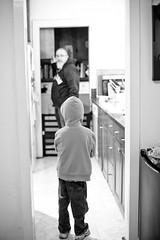 February 8 | Day In A Life (Katrina_Kennedy) Tags: kitchen ian daily potd 365 everyday shea