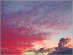 sky paradise #2