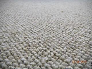 Ulster Carpet, Borneo, Oatcake (14)