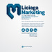 Liciaga Marketing Minisite 1