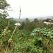 A road near Aburi village