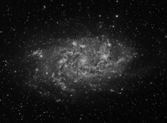 M33 NGC 598 The Triangulum Galaxy (luminance) (Terry Hancock www.downunderobservatory.com) Tags: camera sky color monochrome field wheel night stars spiral photography mono pier backyard fotografie williams photos thomas space shed science images off astro bach observatory telescope ngc598 filter galaxy m33 terry astronomy imaging triangulum pinwheel hancock messier ccd universe cosmos axis paramount luminance optics tmb osc teleskop astronomie byo deepsky guider starlightxpress flattener Astrometrydotnet:status=solved qhy5 130ss Astrometrydotnet:version=14400 at2ff mks4000 qhy9m gt110s wwwdownunderobservatorycom Astrometrydotnet:id=alpha20120338527206 wo68mm