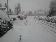 Winter 2012 in Titisee (Baden, Germany) (Loeffle) Tags: schnee winter snow germany deutschland baden allemagne schwarzwald blackforest titisee 022012