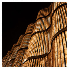 Bamboo Wall (shlomo2000) Tags: wood color 6x6 architecture night square sony bamboo 16mm nocturne textured efects efex