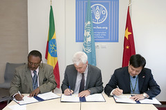 12023h9794 (FAO News) Tags: china italy rome europe ethiopia agreements signingceremony southsouthcooperationssc technicalcooperationprogrammetcp assistantdirectorgeneraladg