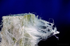 Chrysotile Asbestos Mineral Fibers (Asbestorama) Tags: white canada green mine canadian mining mineral fiber serpentine asbestos fibre chrysotile fibrous asbestiform