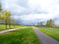 Wege ins Grn (marion streich) Tags: trees sky path wiese himmel kanal grn bume deich wolkendecke frhlingswetter 2wege deichweg grnerspreewald beischmogrowfehrow nheburg