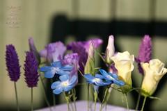 Sugar flowers (work in progress) (Cakes by No More Tiers (York)) Tags: gumpaste englishcountrygarden cakedecorating sugarcraft sugarflowers
