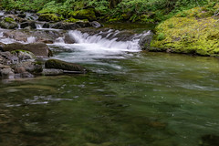DSC09511.jpg (jjdun7) Tags: travel nature water oregon creek forest river landscape countryside waterfall stream lifestyle environment landforms 2016 2015 sardinecreek