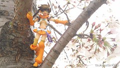 (tsukasatan696) Tags: toy outdoor figure saitama omiya nowa toyphotography revoltech queensblade  outdoortoyphotography  haruokapark