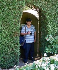 Geoff and the secret door (peter.a.klein (Boulanger-Croissant)) Tags: door canada garden funny bc britishcolumbia humor australian victoria hedge butchartgardens secretgarden secretdoor staffonly