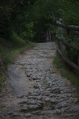 Sentiero (gbobbo) Tags: sentiero caglieron