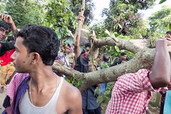 H504_3335 (bandashing) Tags: trees red england music men green manchester dance shrine branch village hill pray crowd sing sylhet bangladesh socialdocumentary mazar baul aoa shahjalal bandashing akhtarowaisahmed treecuttingfestival lallalshahjalal