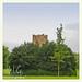 Schlosspark Grafenegg: Mark Dion, Buchsdom Tower | 2016-06