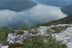 DSC08260 (Rune Venes) Tags: norway no sognogfjordane