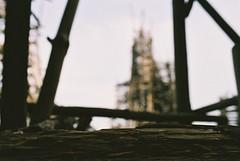 F1000016 (Pavel Kaplunov) Tags: castle sweden driftwood ladonia